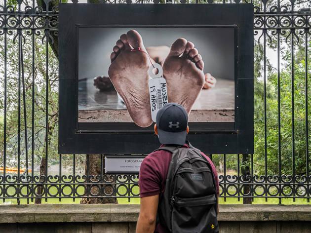 Exposiciones al aire libre en la Ciudad de México