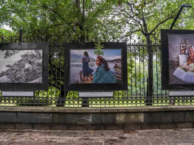 Galería Abierta Rejas del Bosque de Chapultepec