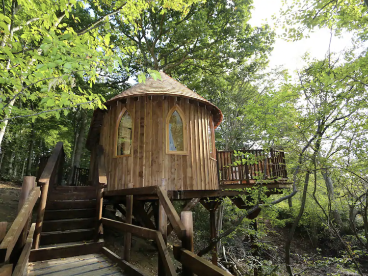 The luxe treehouse in East Sussex