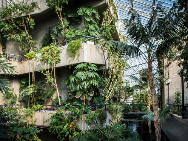 The Barbican is back – and its conservatory is now open all week
