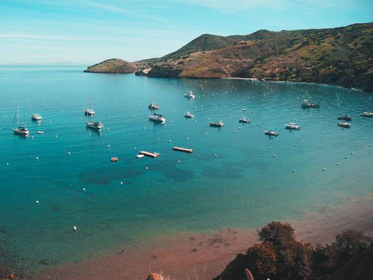 California: Camp in Two Harbors on Catalina Island