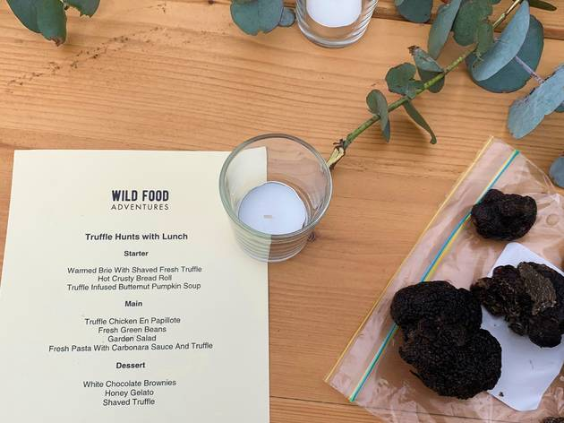 Truffle hunt menu