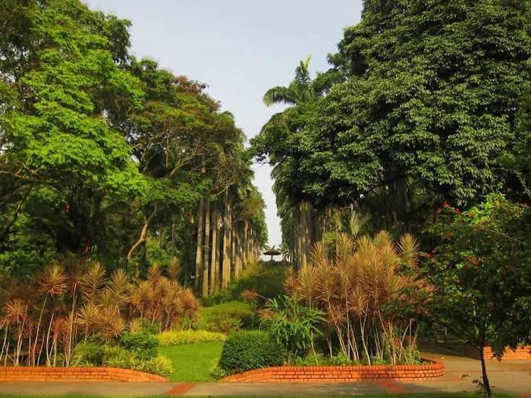 Ang Mo Kio Town Garden