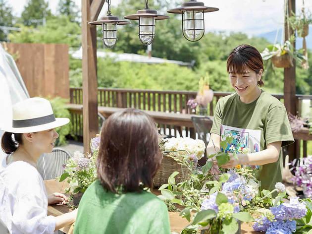日比谷花壇のステイ 里楽巣 フジノ