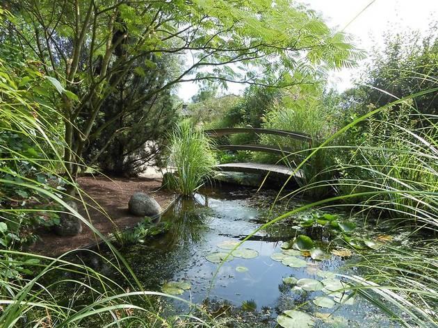 Les Jardins Aquatiques – Moulin des Vernes