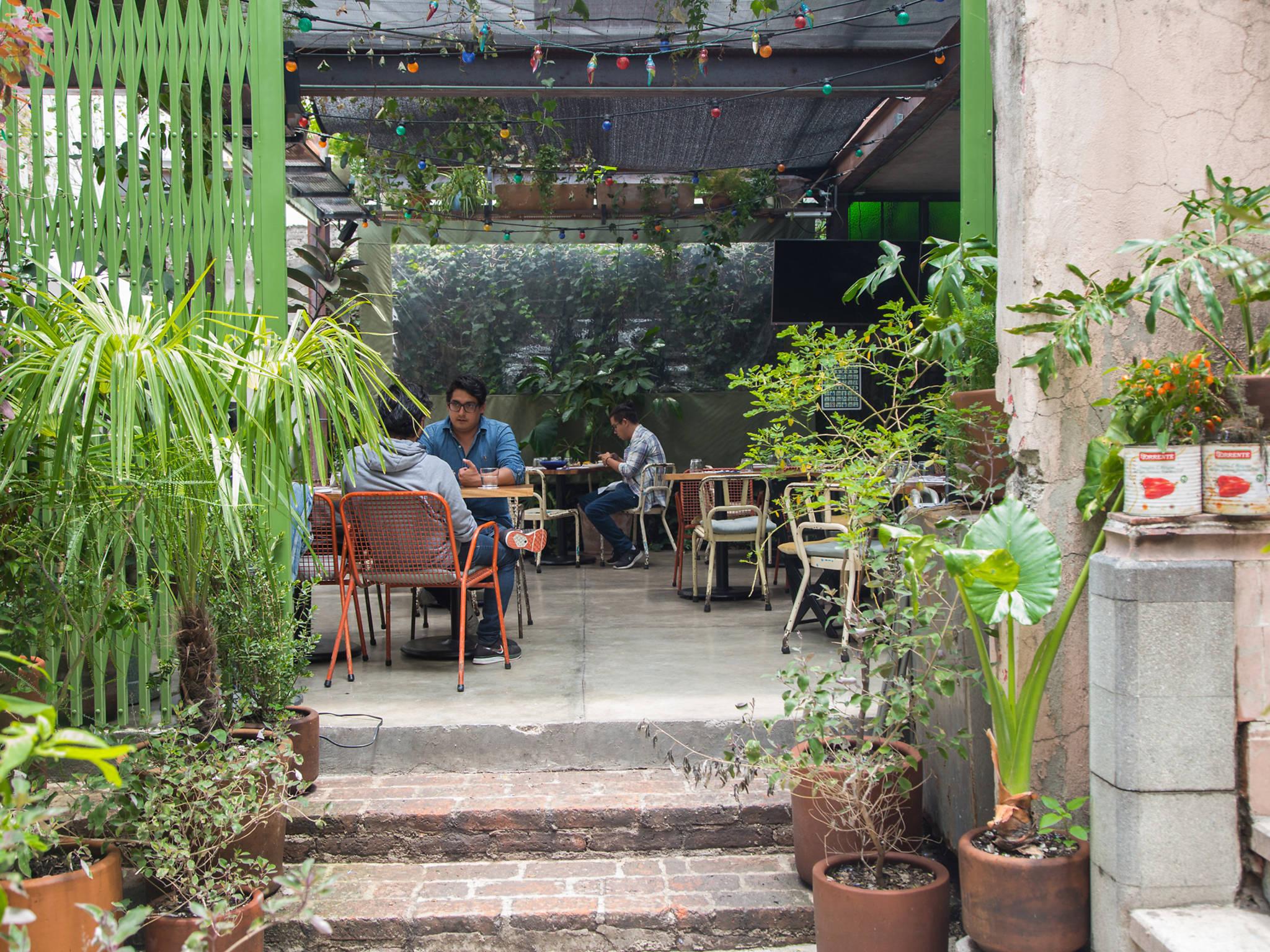 pizza felix terraza con plantas