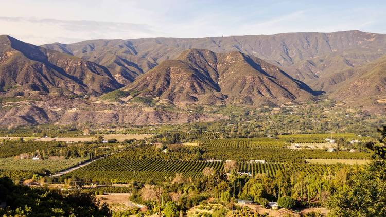 The ultimate guide to Ojai