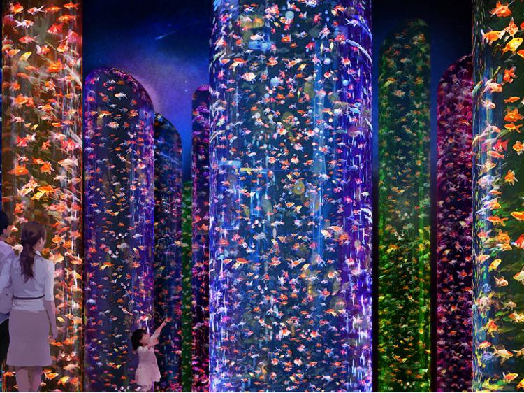 3万匹の金魚が泳ぐ神秘空間が日本橋に誕生