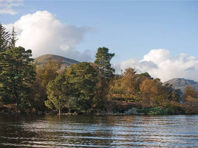 Seeking seclusion? This private island on a Scottish lake is for sale