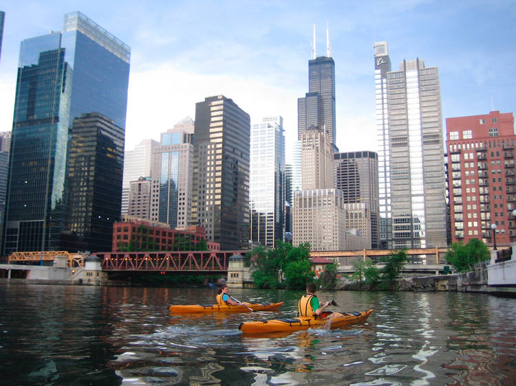 Grab a paddle and glide along the Chicago River