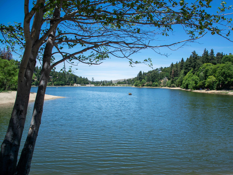 Leg Gregory, San Bernardino National Forest