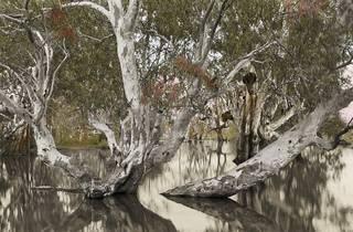 Big Weather - NGV Australia (Photograph: Supplied/NGV Austral)