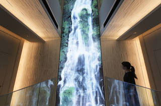 'Universe of Water Particles on the Living Wall' teamLab