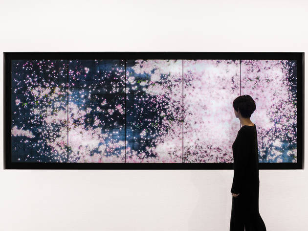 teamLab, Flowers and People - Tokyo, a Whole Year per Year