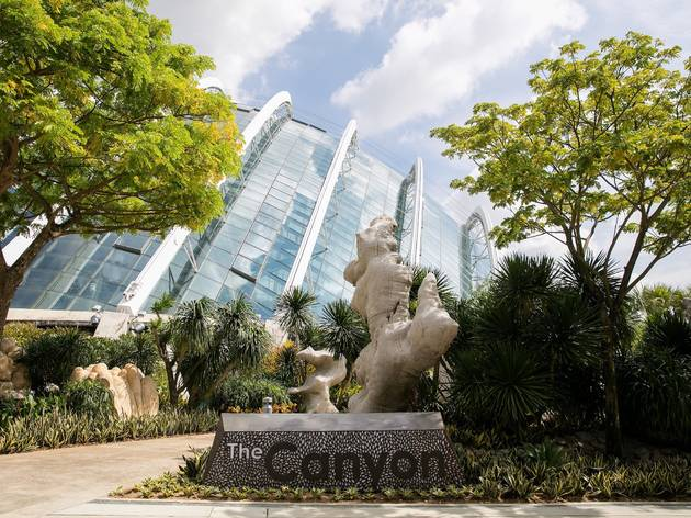 The Canyon at Gardens by the Bay