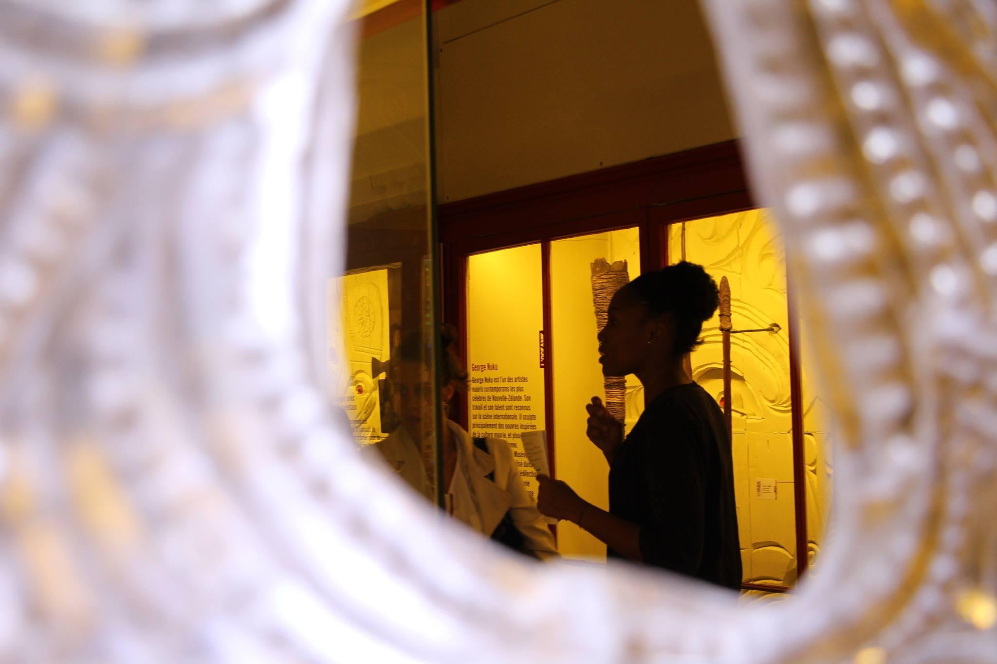 Muséum De Rouen - MHNR