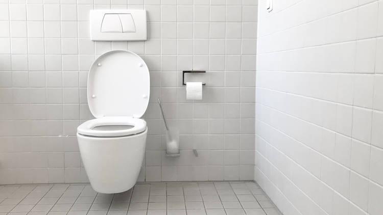 Generic toilet shot