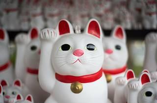 Gotokuji cat temple