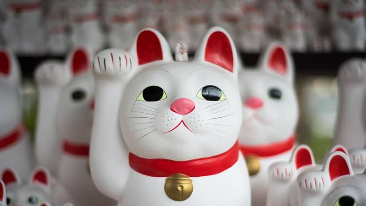 Japanese lucky cat, Gotokuji temple