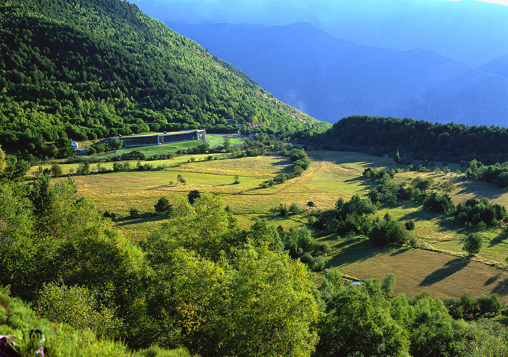 Gaudiu d'un món natural al Delta de l'Ebre i als Pirineus!