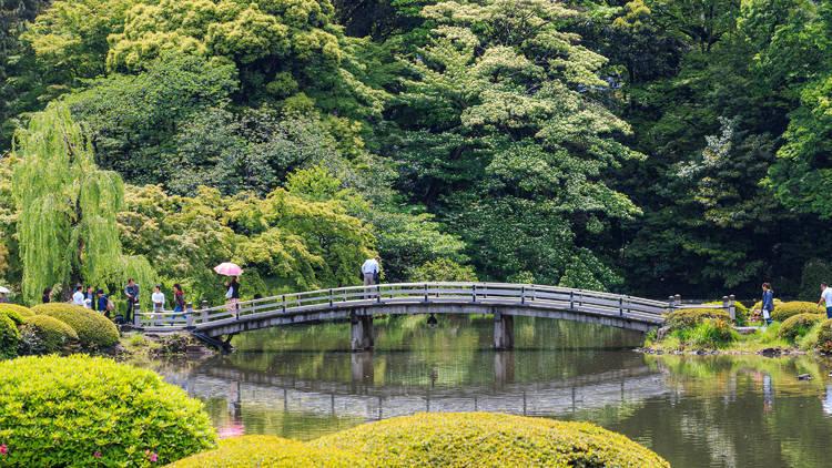 Shinkuku Gyoen Japanese garden