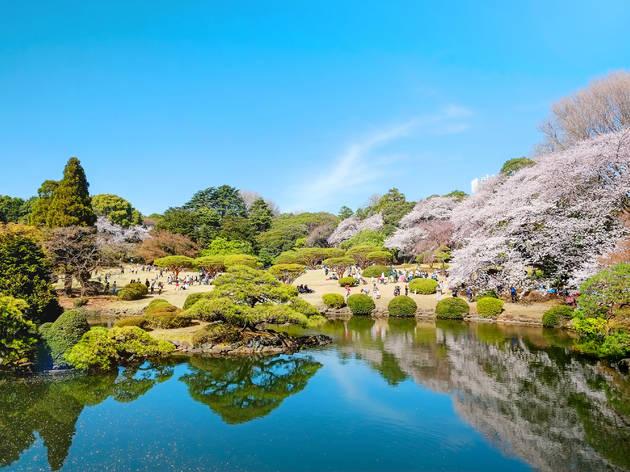 Shinjuku Gyoen, Japanese garden