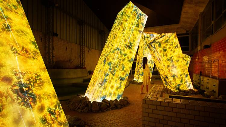 Megaliths in the Bath House Ruins teamLab