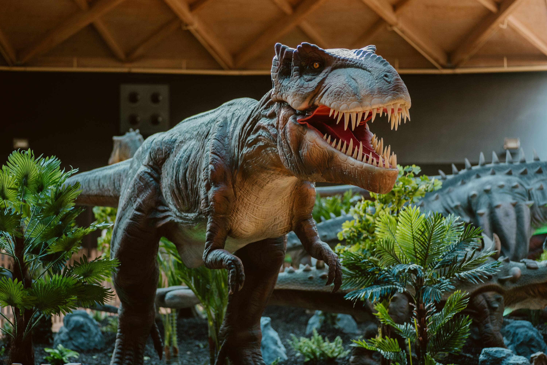 Tiranosaure Rex a Dinoland Arenas