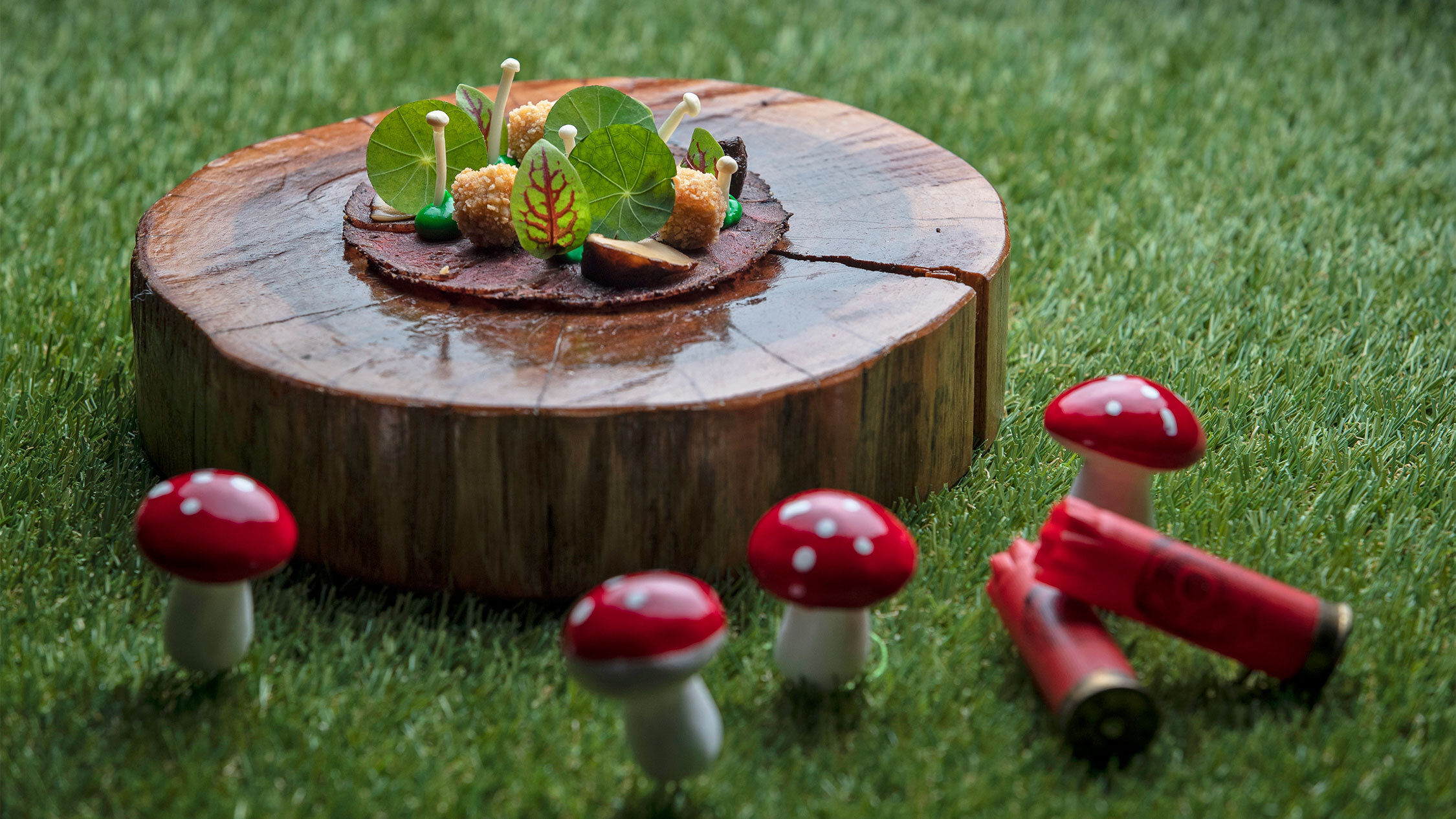 dish featuring red toadstools