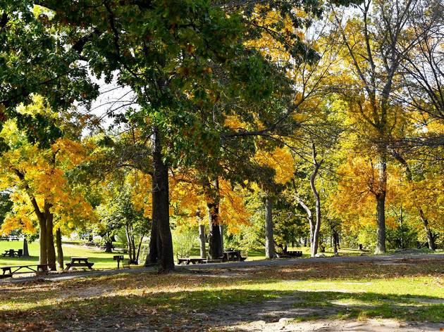 Pelham Bay Park, new york
