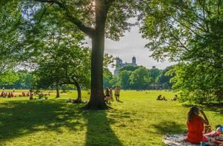 Photograph: Shutterstock