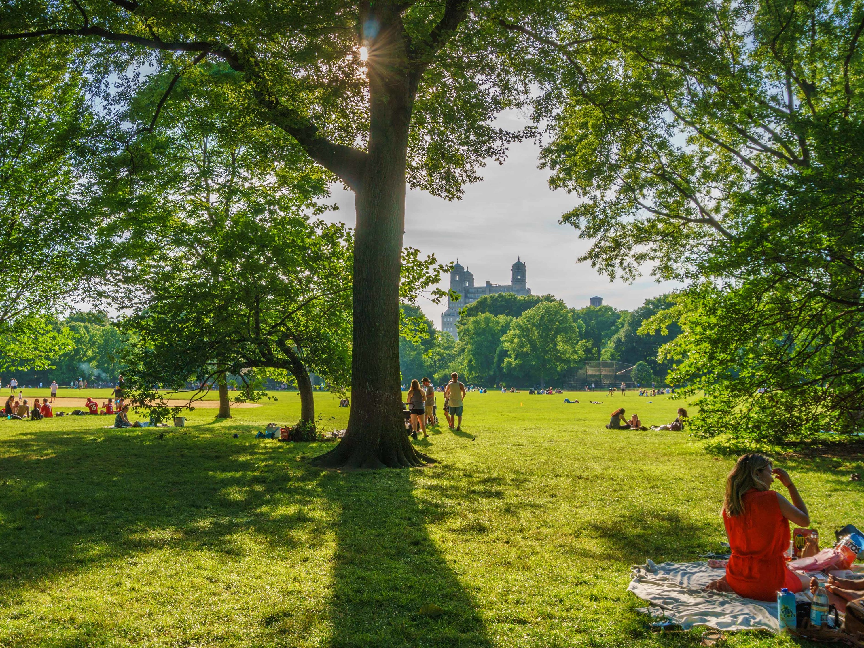Six scenic New York parks to host a summer picnic