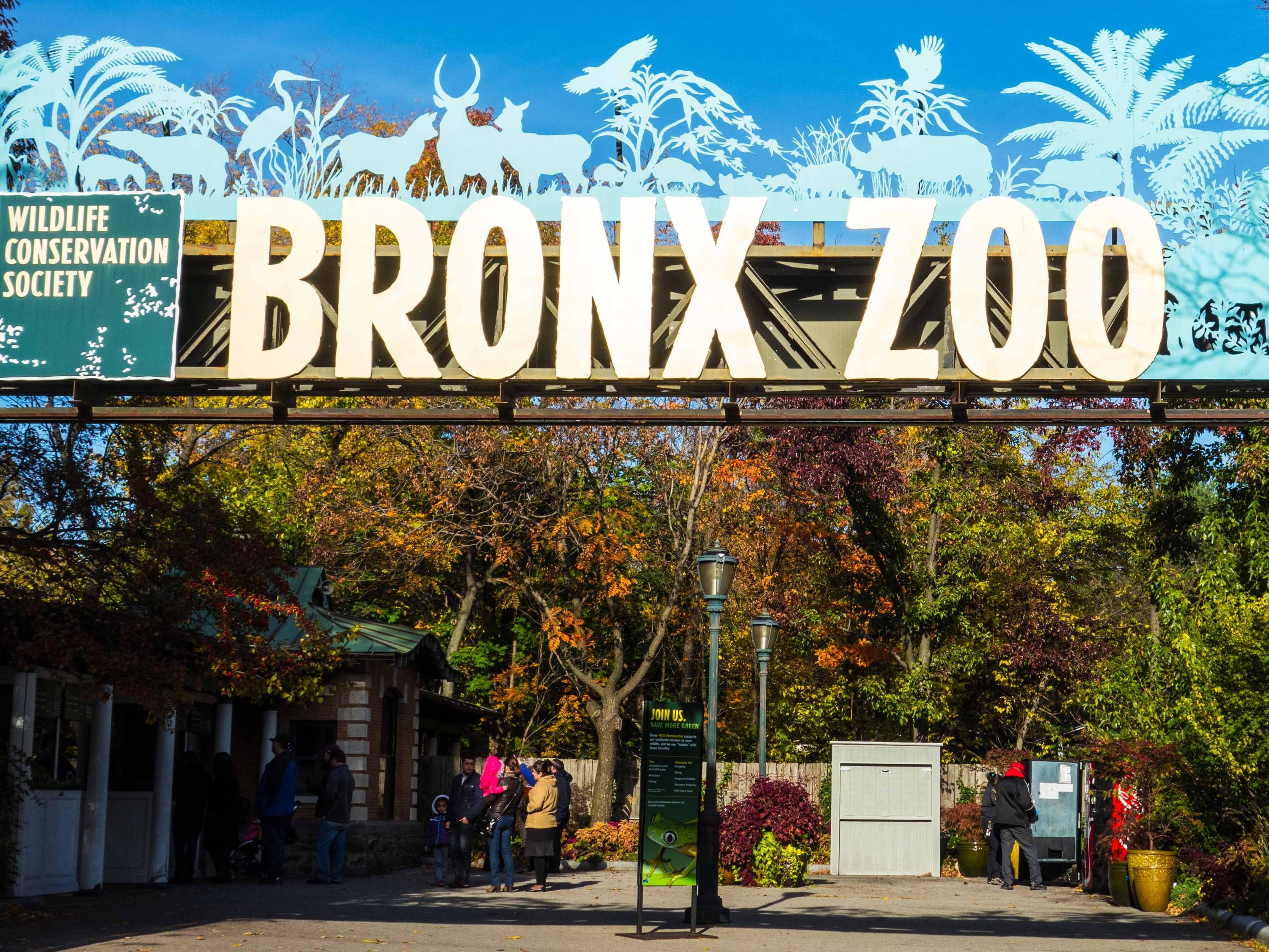 The Bronx Zoo Will Bring Back Free Wednesdays