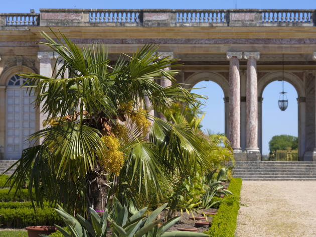 © château de Versailles, Thomas Garnier