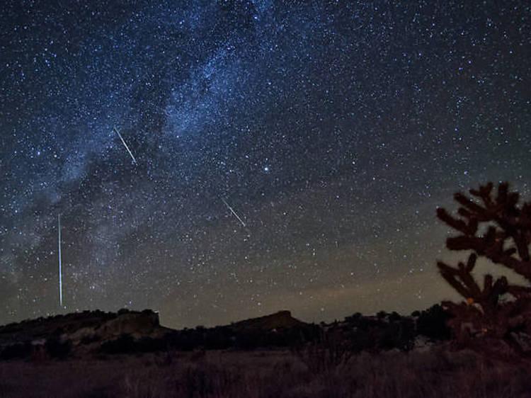 Les 21 et 22 octobre : une pluie de météorites orionides