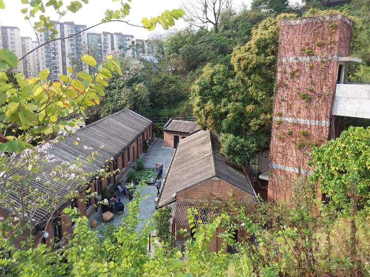 Hidden gardens and green spaces in Hong Kong