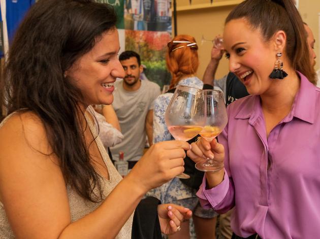 Punters enjoying Gin Palooza