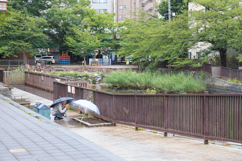 写真:大石慶子
