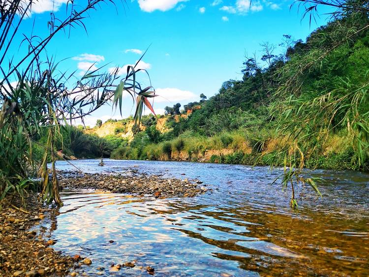 Passear por el río Ripoll