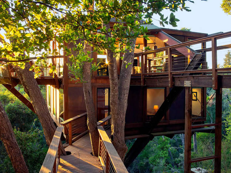 Peaceful Treehouse with Ocean View (Aptos)