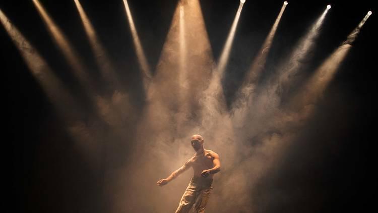 Árbol Danza de Álvaro Pizarro forma parte de la quinta edición del FIDCDMX