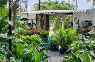 MiMo Garden Center