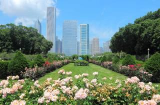 Grant Park Rose Garden