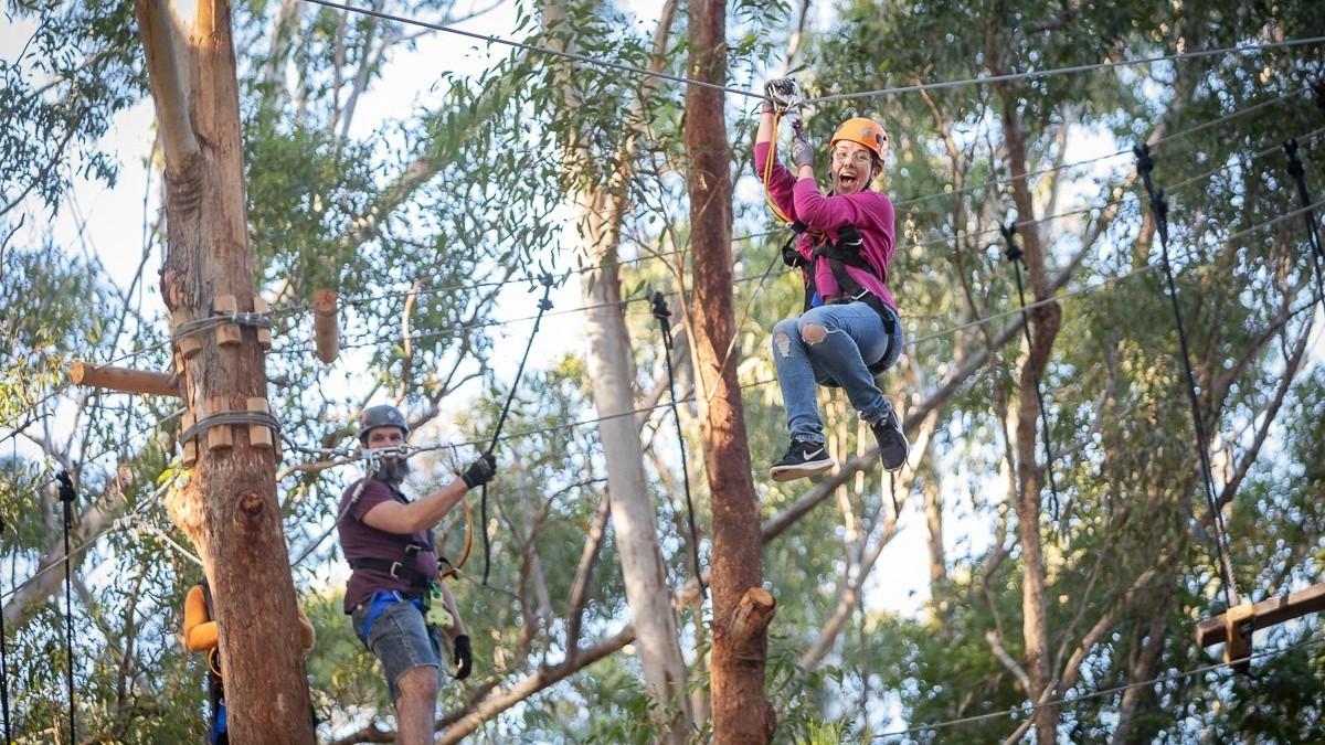 Treetops Adventure Park