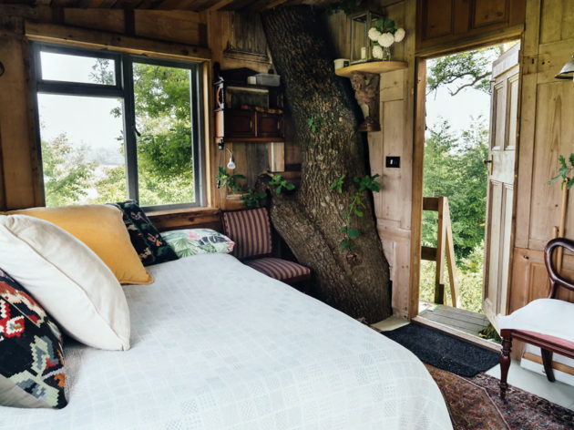 Treehouse Retreat, Kent
