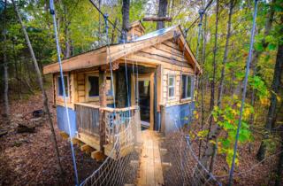 Aliyah Tree House Airbnb