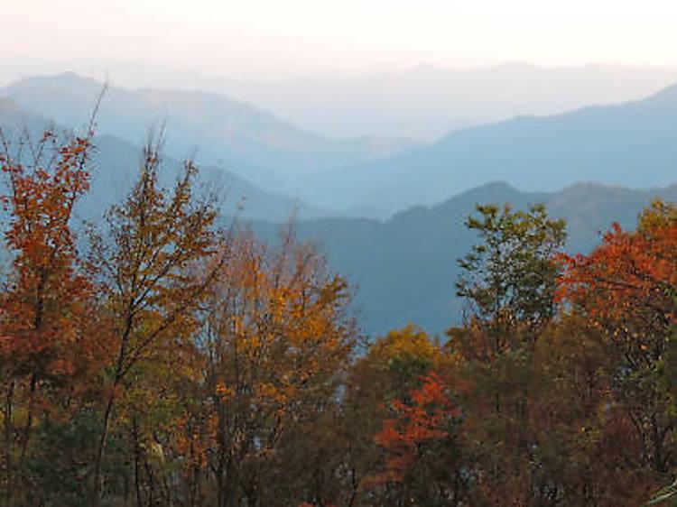 大岳山(1266.5メートル)