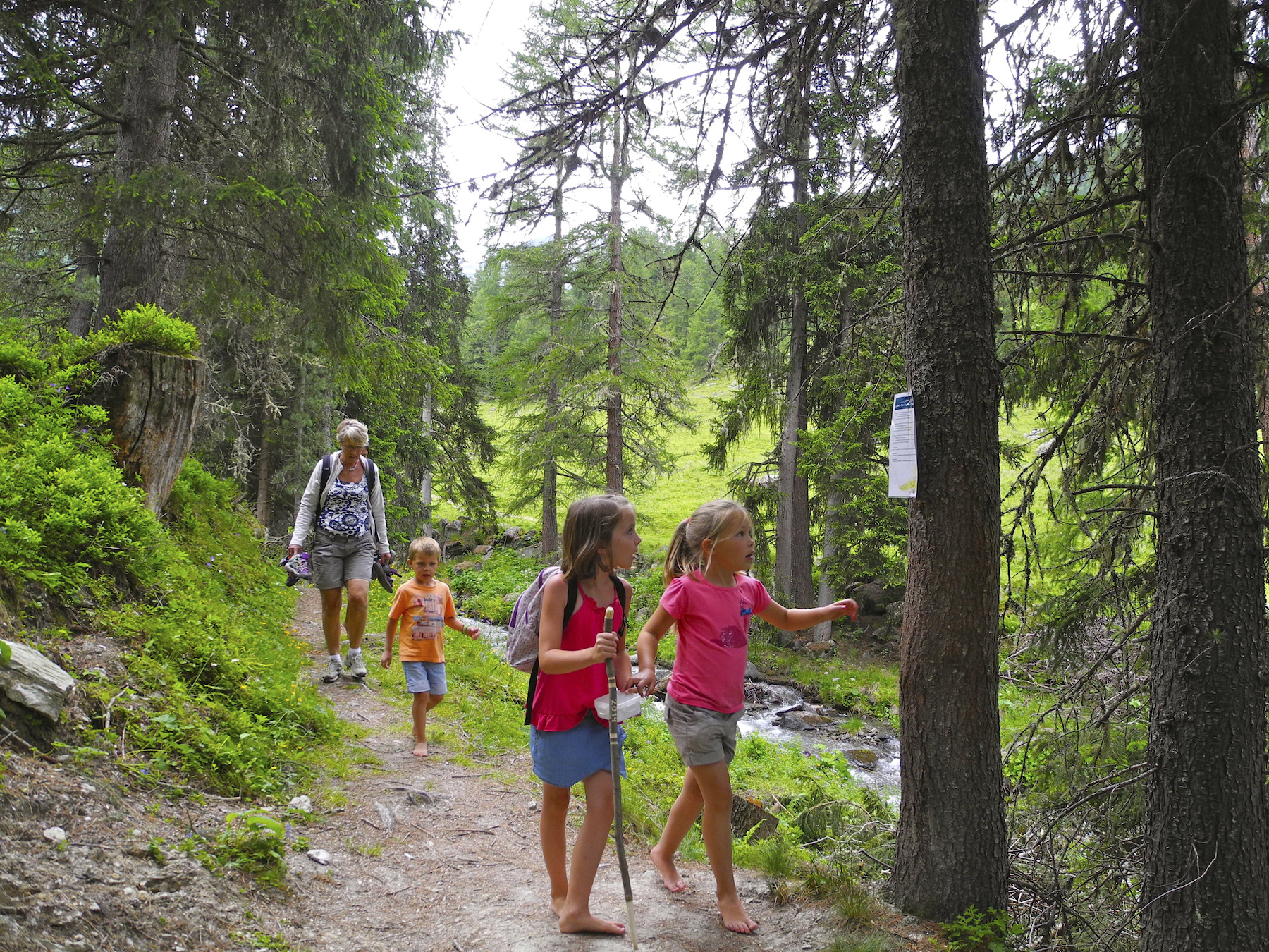 6 great family activities in Valais