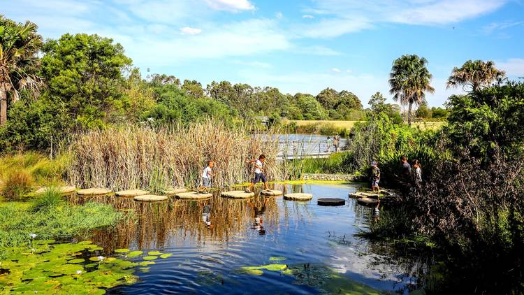 Children walk across stone path on pond at Sydney Park