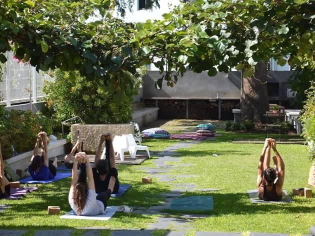 Baumhaus, alojamento, yoga, boavista